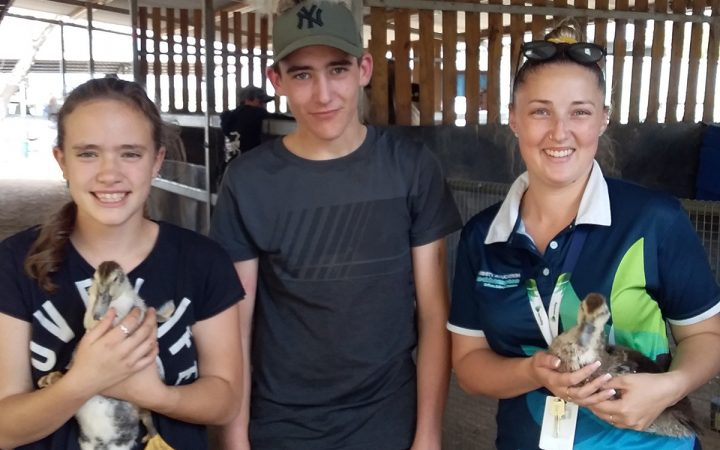 Carinity Education Rockhampton students assist at an animal farm.
